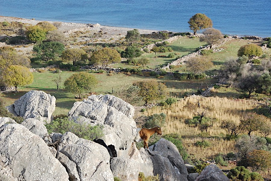 Hiking Trail Tilos Greece